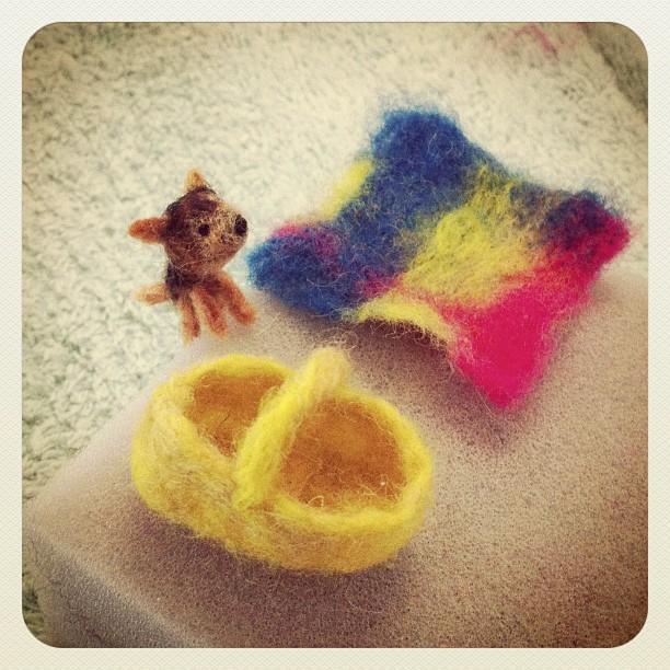 Crobi, his basket and blanket x